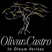 Olivar de Castro Aove Logo
