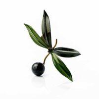 Broche con hojas de olivo y aceituna negra hecho a mano en Jaén